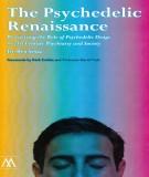 the psychedelic renaissance: part 1