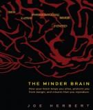 the minder brain: part 2