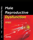 male reproductive dysfunction: part 1