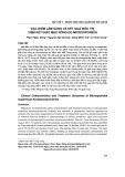 Đặc điểm lâm sàng và kết quả điều trị viêm kết giác mạc nông do microsporidia