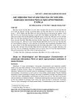 Đặc điểm hình thái và giải phẫu của cây Sơn đôn Amalocalyx microlobus Pierre ex Spire (apocynaceae) ở Sơn La