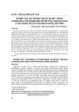 Nghiên cứu giá trị điện tâm đồ bề mặt trong chẩn đoán vị trí đường dẫn truyền phụ vùng sau vách ở hội chứng Wolff-Parkison-White điển hình