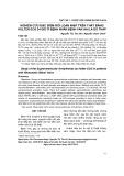 Nghiên cứu đặc điểm rối loạn nhịp trên thất bằng Holter ECG 24 giờ ở bệnh nhân bệnh van hai lá do thấp