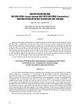 Hiệu quả của mô hình nuôi tôm chân trắng (penaeus vannamei) ghép với cá diêu hồng (oreochromis sp.) thích ứng với biển đổi khí hậu tại huyện Giao Thủy, Nam Định