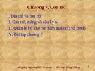 Bài giảng Lập trình C: Chương 7 - Ngô Công Thắng