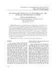 Đặc trưng thủy động lực vực nước Bình Cang   Nha Trang qua mô hình fem và ecosmo