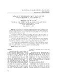Năng suất sinh học của quần xã Plankton ở vùng biển quần đảo Trường Sa