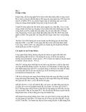 Tuyển tập bài viết về CCNA