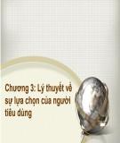 Bài giảng Kinh tế học đại cương: Chương 3 - ThS.Trương Thị Hòa