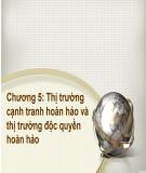 Bài giảng Kinh tế học đại cương: Chương 5 - ThS.Trương Thị Hòa