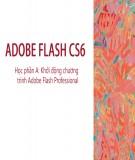 Bài giảng Thiết kế đa truyền thông với Adobe Flash CS6: Học phần A