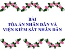 Bài giảng Luật hiến pháp Việt Nam: Bài 9 - ThS. Phan Nguyễn Phương Thảo