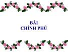 Bài giảng Luật hiến pháp Việt Nam: Bài 8 - ThS. Phan Nguyễn Phương Thảo