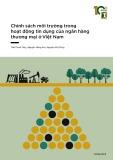 báo cáo chính sách môi trường trong hoạt động tín dụng của ngân hàng thương mại ở việt nam