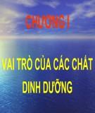 Bài giảng Dinh dưỡng động vật: Chương 1.1 - TS. Lê Việt Phương