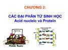 Bài giảng Sinh học phân tử: Chương 2
