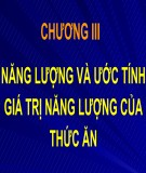Bài giảng Dinh dưỡng động vật: Chương 3 - TS. Lê Việt Phương