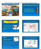 Bài giảng Chăn nuôi trâu bò: Chương 2 - Học viện Nông nghiệp Việt Nam (2017)