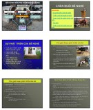 Bài giảng Chăn nuôi trâu bò: Chương 4 - Học viện Nông nghiệp Việt Nam (2017)