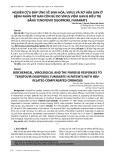 Nghiên cứu đáp ứng về sinh hóa, virus và xơ hóa gan ở bệnh nhân xơ gan còn bù do virus viêm gan b điều trị bằng tenofovir disoproxil fumarate
