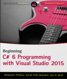 visual c 2015 programming: part 1