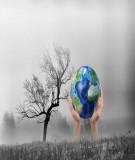 Cơ sở sinh thái học cho phát triển bền vững và ứng phó với biến đổi khí hậu