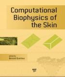 computational biophysics of the skin: part 2