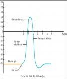 Bài giảng Sinh lý học - Bài 4: Sinh lý điện thế màng và điện thế hoạt động