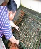 Kỹ thuật nuôi lươn - Nguyễn Lân Hùng