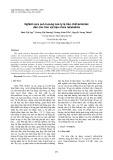 Nghiên cứu ảnh hưởng của tỷ lệ tiền chất/amoniac đến cấu trúc vật liệu chứa nanosilica