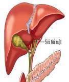 Các phương pháp phẫu thuật trong điều trị sỏi trong gan