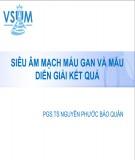 Bài giảng Siêu âm mạch máu và  mẫu diễn giải kết quả - PGS.TS Nguyễn Phước Bảo Quân