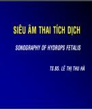 Bài giảng Siêu âm thai tích dịch - TS.BS. Lê Thị Thu Hà