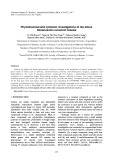 Phytochemical and cytotoxic investigations of the lichen Stereocaulon evolutum Graewe