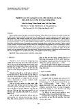 Nghiên cứu chế tạo gốm sứ hệ silic cacbua sử dụng làm phin lọc xỉ cho kim loại nóng chảy
