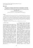 Perspective on biomass derived bio-oil valorization in Viet Nam