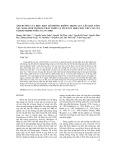 Ảnh hưởng của điều kiện mô phỏng không trọng lực lên khả năng nảy mầm, sinh trưởng, phát triển và tích lũy hợp chất thứ cấp của sâm bố chính nuôi cấy in vitro