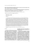 Phân tích hệ protein/peptide nọc độc ong vespa velutina phân lập ở Việt Nam bằng kỹ thuật proteomics