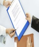 Mẫu Hợp đồng dịch vụ tư vấn và pháp lý song ngữ Việt-Anh
