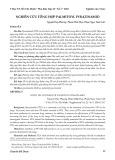 Nghiên cứu tổng hợp palmitoyl pyrazinamid