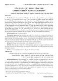 Tối ưu hóa quy trình tổng hợp carboxymethyl beta cyclodextrin