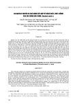 Đa dạng di truyền và khả năng kết hợp về năng suất, chất lượng của các dòng dưa thơm (Cucumis melo L.)