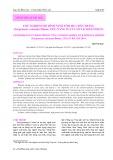 Thử nghiệm mô hình nuôi tôm he chân trắng (Litopenaeus vannamei Boone, 1931) năng suất cao tại Khánh Hòa