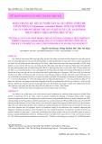 Hiện trạng kỹ thuật nghề sản xuất giống tôm thẻ chân trắng (Litopenaeus vannamei boone, 1931) sạch bệnh tại Tuy Phong Bình Thuận và đề xuất các giải pháp phát triển theo hướng bền vững
