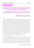 Nghiên cứu điều kiện môi trường, đặc điểm sinh trưởng, dinh dưỡng của sá sùng (Sipunculus robustus Keferstein, 1865) tại vùng triều ven biển Cam Ranh - Khánh Hòa