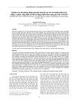Nghiên cứu mô phỏng đánh giá hiệu quả bộ xúc tác ba thành phần trên động cơ phun xăng điện tử khi sử dụng nhiên liệu xăng pha cồn E10-E20