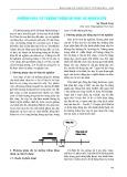 Phương pháp cắt buồng trứng bò phục vụ nghiên cứu