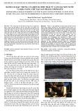 Đánh giá đặc trưng của bột đá phế thải từ làng đá Non Nước và khả năng chế tạo sản phẩm composite