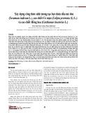 Xây dựng công thức nhũ tương tạo bọt chứa dầu mè đen (Sesamum indicum L.), cao chiết Cỏ mực (Eclipta prostrata (L) L.) và cao chiết Hồng hoa (Carthamus tinctorius L.)