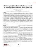 Phát hiện và giám định nhanh vi khuẩn Xanthomonas axonopodis pv. manihotis gây bệnh vi khuẩn tàn lụi sắn bằng kỹ thuật PCR